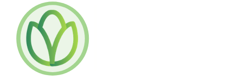 The Seed Token